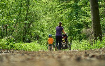 Sommerferien in der Natur – 3 Ausflugtipps für Familien