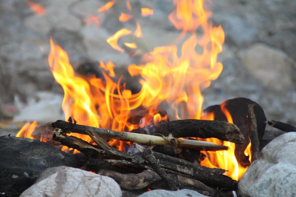 Bild zeigt ein Feuer im Wald.