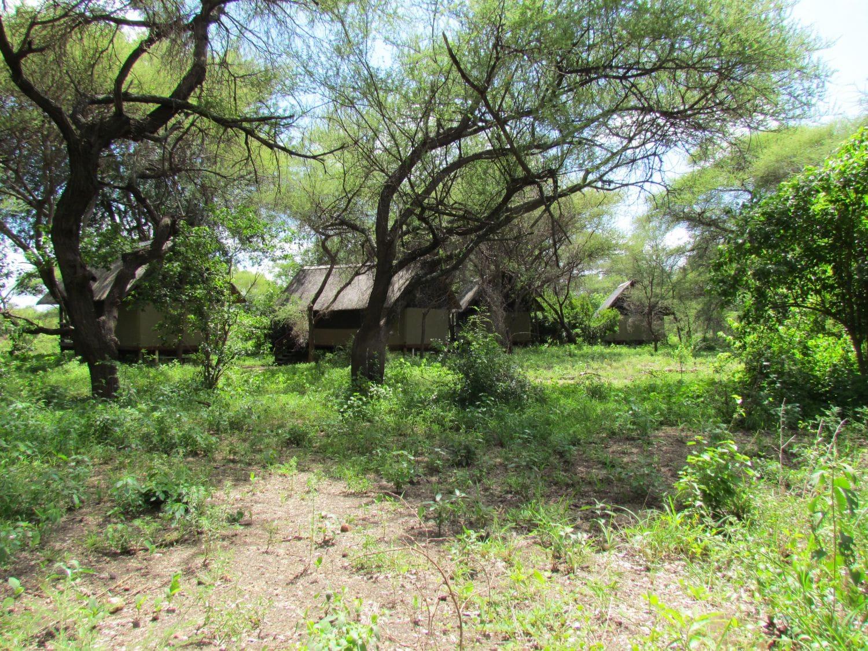 Ausbildungscamp EcoTraining Krüger Nationalpark in Südafrika