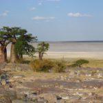Einmal südliches Afrika und zurück - Teil 1
